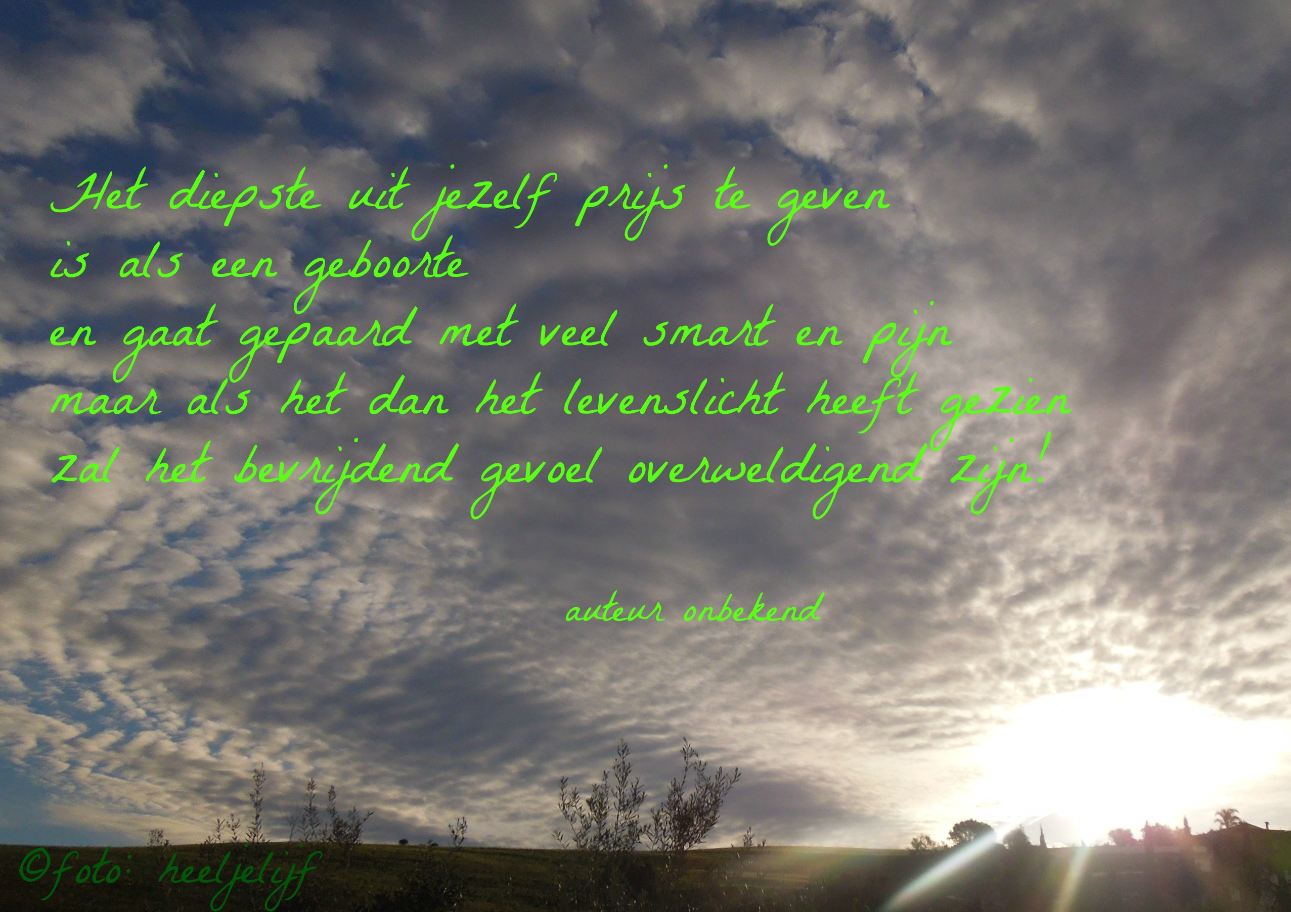 citaat gedichtenbundel foto blog